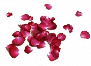 ritual de amor con petalos de rosa